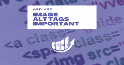 Why are Image Alt Tags important for SEO